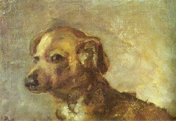 1895 Clipper, le chien de Picasso